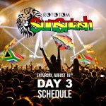 Rototom Sunsplash 2018 Day 3 - Schedule