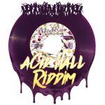 Acid Hall Riddim [2000] (Salaam Remi)