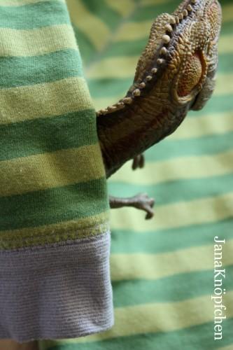Selbstgenähtes Dinoshirt mit Dinoapplikation - JanaKnöpfchen - Nähen für Jungs