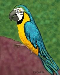 Parrot-Prompt-Realism-#52Week-Illustration-Challenge