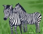 two-zebras-illustration