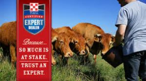 purina cattle feeds-https://www.jandnfeedandseed.com