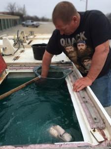 fish truck- https://www.jandnfeedandseed.com