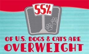 pet overweight-https://www.jandnfeedandseed.com