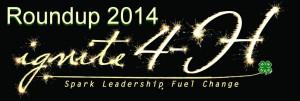 4H_roundup_logo_2014-1024x348