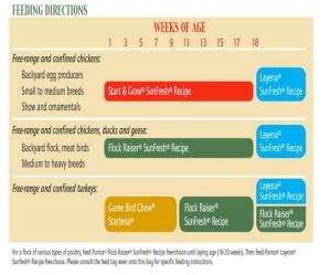 poultry feeding stages- https://www.jandnfeedandseed.com