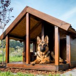 DogHouseWithGermanShepard