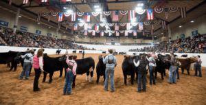 2018-2019 Livestock Shows