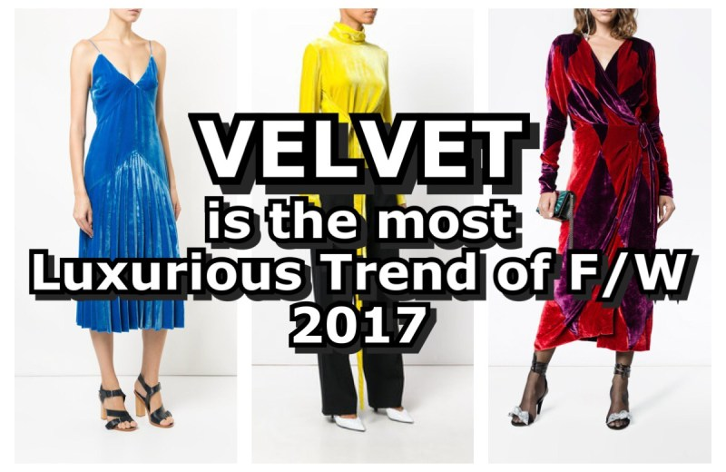 velvet is the most luxurious