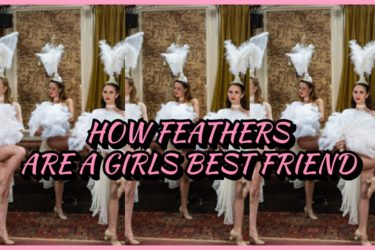 how feathers