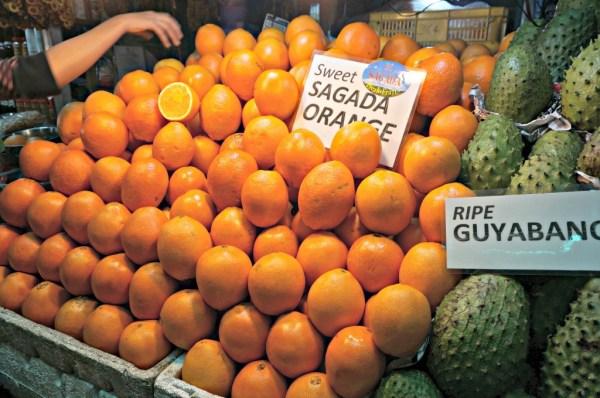 baguio-city-sagada-orange