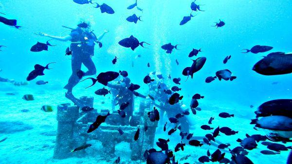 padi-diving-33