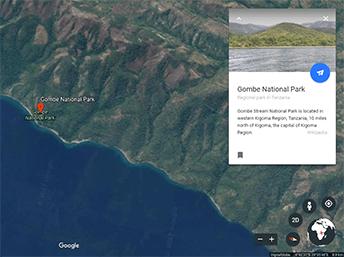 google-earth-gombe