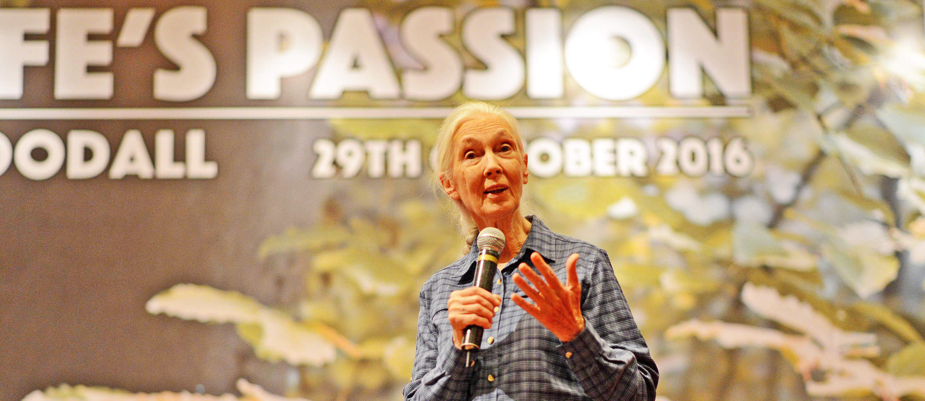 Dr. Jane Goodall participating in a Q&A session in Kuala Lumpur, Malaysia. 2016