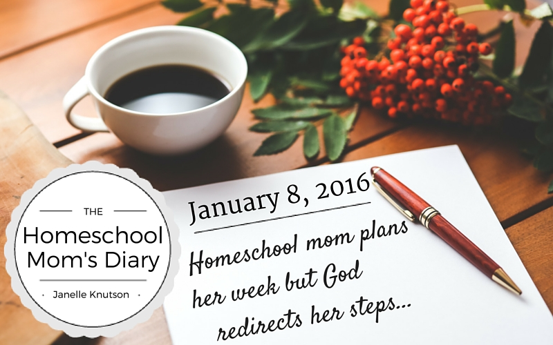 Homeschool Mom Diary God Redirects steps