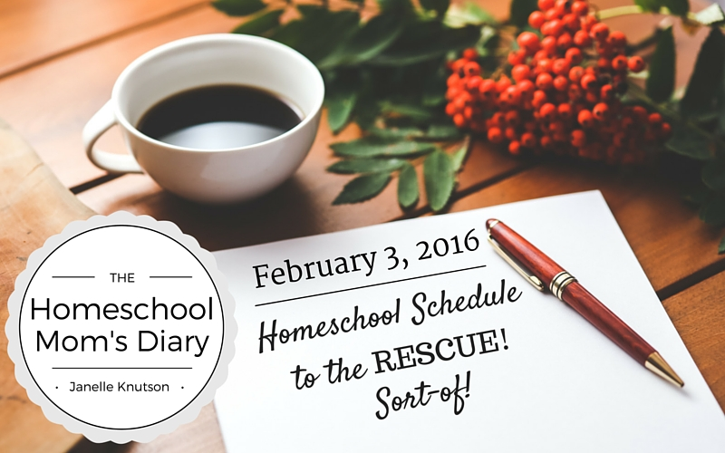The Homeschool Mom's Diary schedule to the rescue
