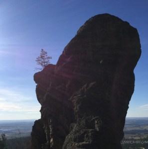 Fall Hike - Giant rock with a single tree
