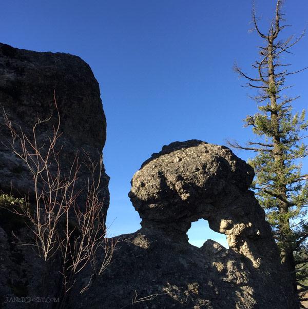 Fall Hike - Perfect mushroom keyhole