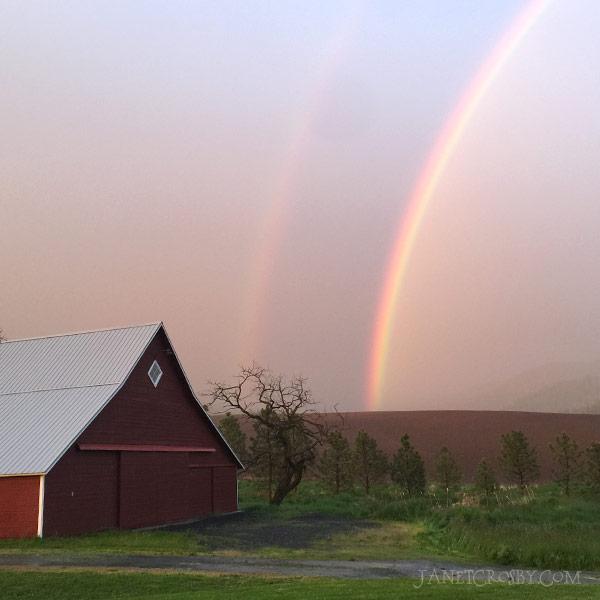 Rainbow Barn by Janet Crosby