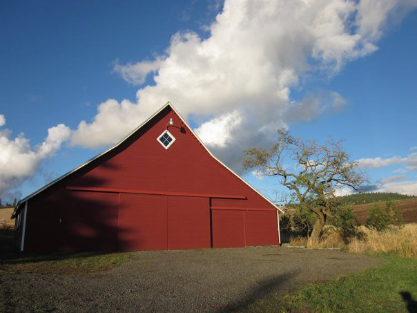 Sunny Day Barn by Janet Crosby
