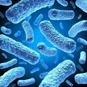 E-coli on a blue background