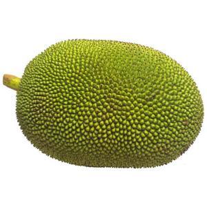 a Jack fruit on a white background