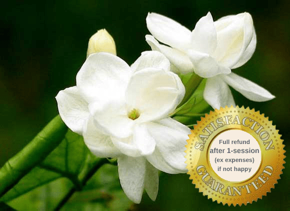 jasmine flower for feeling healthier and ahppier