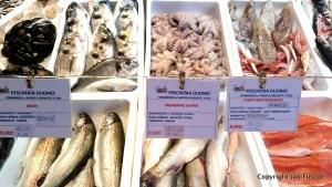 Market, Cremona