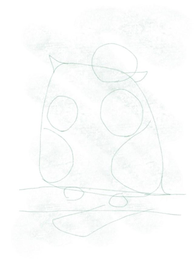 Eule_zeichnen_schwanzgefieder