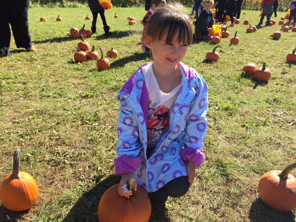 Emma Picking Her Pumpkin at the Farm