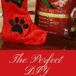How to Make the Perfect DIY No-Sew Doggie Christmas Stocking #Txt4Pet