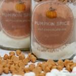 Pumpkin Spice Hot Chocolate Mix Closeup