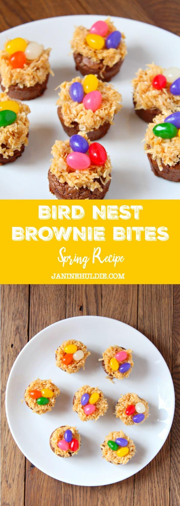 Bird Nest Brownie Bites Spring Recipe