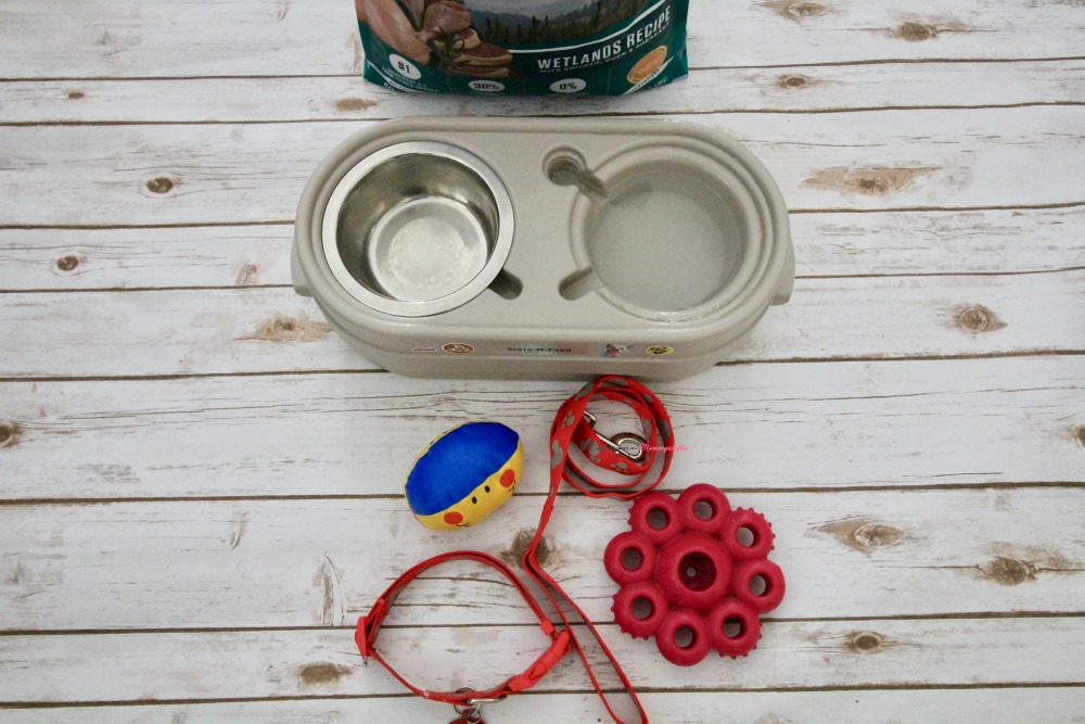 Dog Must Haves 3