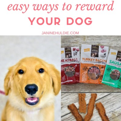 Four Easy Ways to Reward Your Dog