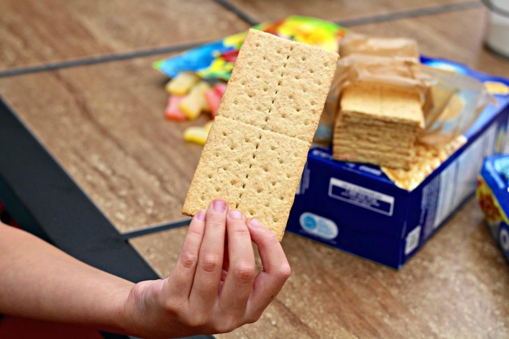 Honeymaid Graham Cracker Closeup
