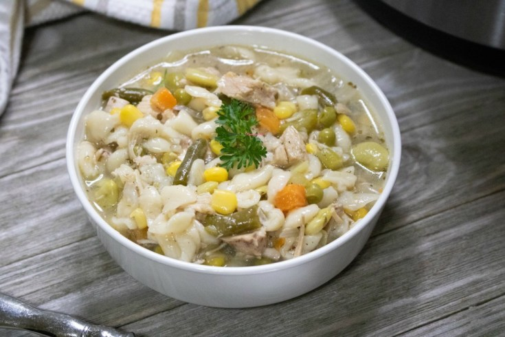Instant Pot Turkey Veggie Soup with Leftovers Recipe