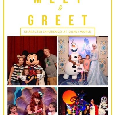 5 Most Popular Character Meet and Greet at Disney World