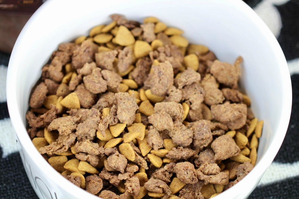Closeup of Purina One in Bowl at Mealtime