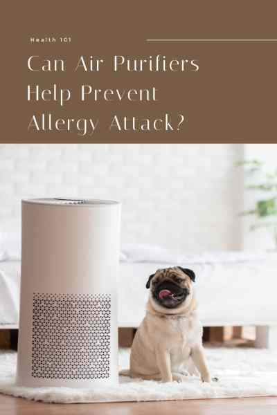 Can-Air-Purifiers-Help-Prevent-Allergy-Attack
