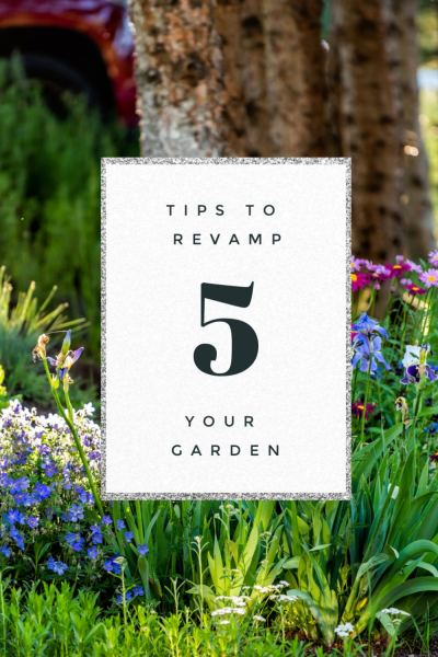 5-Tips-to-Revamp-Your-Garden