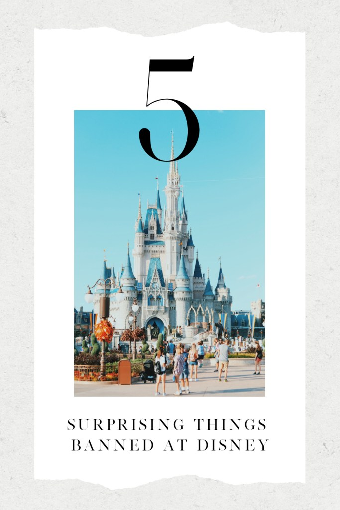 5-Things-Banned-at-Disney-World