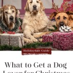 What Do You Get a Dog Lover For Christmas?