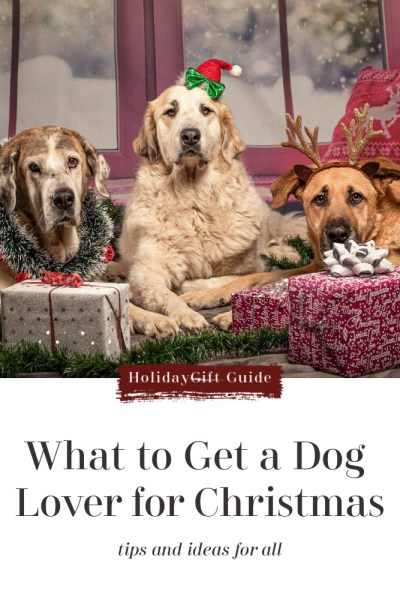 Ideas-to-Get-a-Dog-Lover-for-Christmas