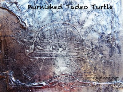 Burnished Tadeo Turtle