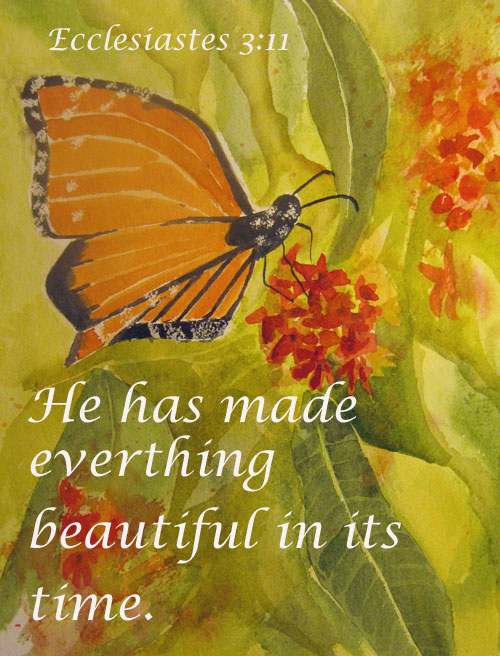 Butterfly - Ecclesiastes 3:11