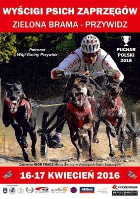GRUPA JANISZ sponsorem Wyścigów Psich Zaprzęgów