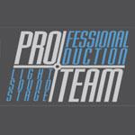 Partner_ProTeam_im_Beitrag