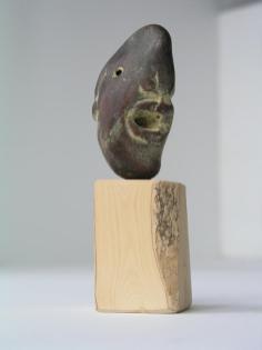 Januskop