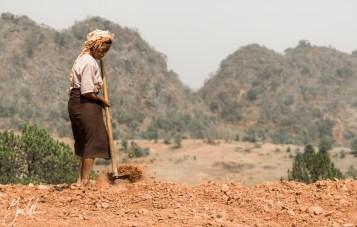 farmer working hard